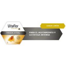 Vitaflor Jalea Real Mega Vital 20 Amp